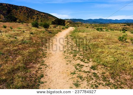 Pacific Crest Hiking Trail Which Is A Hiking Trail Between The California/mexico Border And The Wash