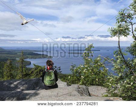 Ukko-koli Hill, Finland On July 05. View Of Lake Pielinen From A Rock On July 05, 2017 In Ukko-koli
