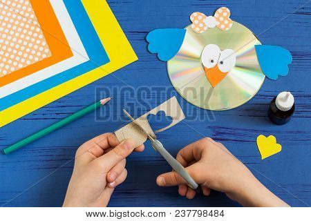 Child Makes Bird From Cd. Step 13