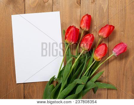 tulips are on wooden boards, blank paper sheet with place for text - holiday and greeting concept