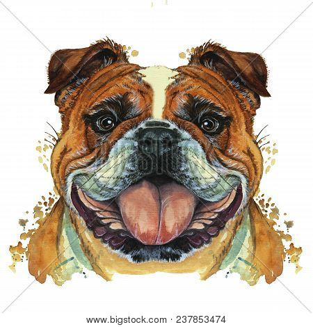 Watercolor Printshop, Print On The Theme Of The Breed Of Dogs, Mammals, Animals, Breed English Bulld