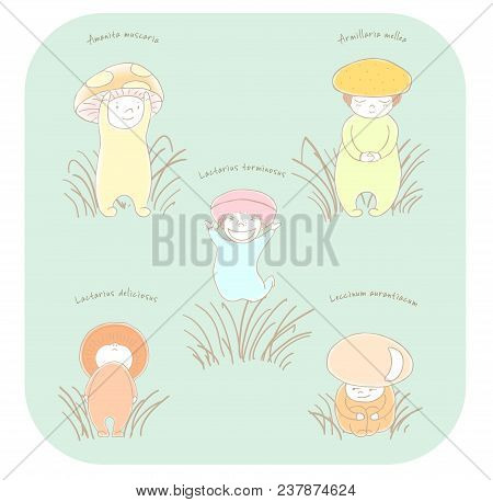 Hand Drawn Vector Illustration Of Cute Mushrooms With Latin Names: Fly Amanita, Red Capped Scaber St