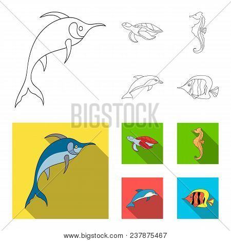 Merlin, Turtle And Other Species.sea Animals Set Collection Icons In Outline, Flat Style Vector Symb