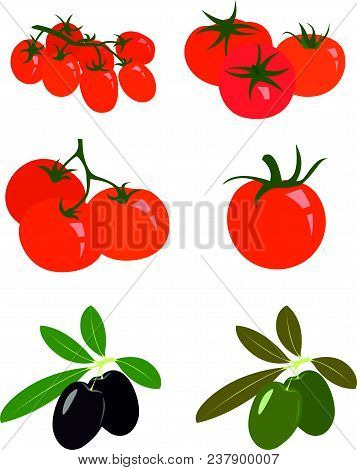 Collection Of Fresh Red Tomatoes, Ripe Black And Green Olives. Vector Illustrations On White Bacgrou