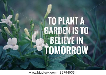 Motivational And Inspirational Quote- To Plant A Garden Is To Believe In Tomorrow. With Blurred Vint