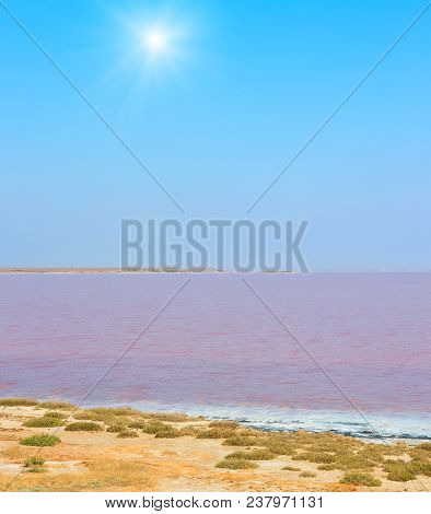 Sunshiny Pink Extremely Salty Syvash Lake, Colored By Microalgae. Also Known As The Putrid Sea Or Ro