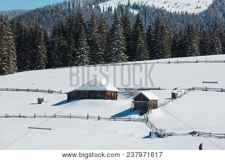 Picturesque Snowy Winter Skupova Mountain Slope And Lone Farmhouse On Plateau Farmstead, Carpathian,