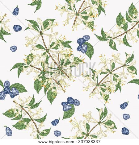 Colorful Honeysuckle Flowers And Berries Seamless Pattern. Lonicera Japonica. Vector Illustration. D