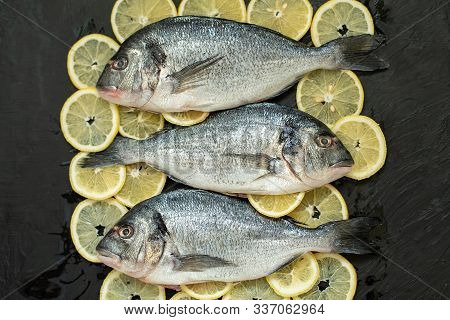 Raw Fish Hake. Five Raw Fish Fillet With Organic Fresh Tomatoes On Ice On Dark Background,