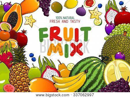 Tropical Fruits Mix, Juicy Multifruit Banana, Pineapple, Mango And Watermelon. Vector Natural Organi