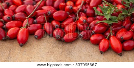 Freshly Picked Rose Hips On The Wooden Table. Rose Hip Commonly Known As Rose Hip (rosa Canina).