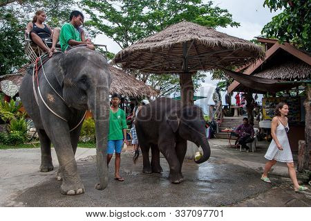 Phuket, Thailand - November 24, 2015: Tourists Ride On Elephants. Tourists Are Sitting On An Adult E
