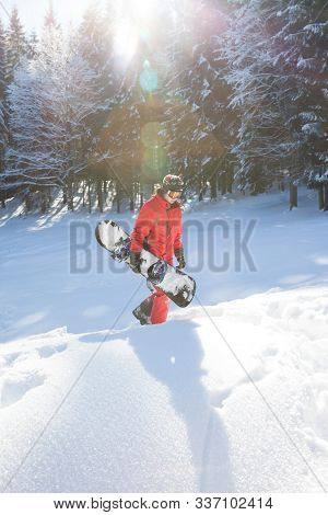 Freerider With Snowboard In Hands At Snowy Spruce Forest At Sun Winter Day. Christmas Holidays In Ca