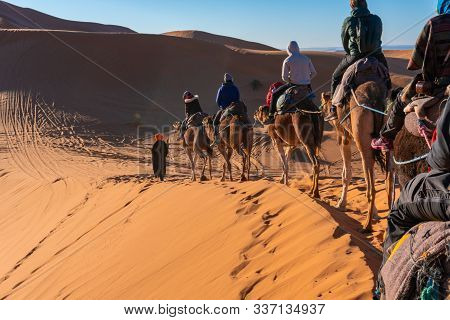 Participating In Camel Caravan Tour In Sahara Desert, Morocco