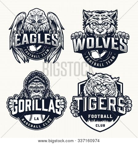 Sport Teams Vintage Emblems With Angry Eagle Wolf Tiger Gorilla Mascots And Inscriptions In Monochro