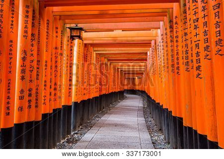 Kyoto, Japan - November 11, 2018 - Vermillion Torii path at Fushimi Inari Taisha Shrine with donator's name and the date of the donation inscribed on the back of each gate.