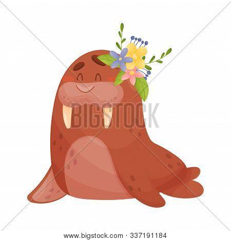 Adorable Baby Walrus Vector Illustration Cartoon Character