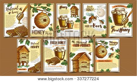 Bee Insect, Wild And Wooden Beehive Posters Vector. Bee Insects, Dipper Stick, Glass Bottle With Hon