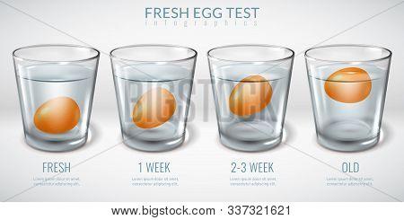 Realistic Glass Glasses Infographics. Egg Floating Freshness Test Glass Water. Realistic Horizontal