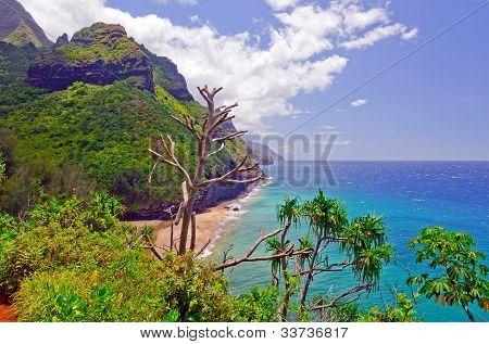 Hanakapi'ai beach on the Kalalau trail in Hawaii poster