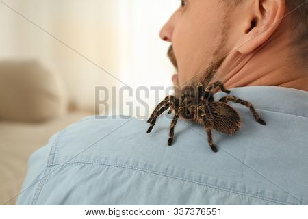Man With Tarantula At Home, Space For Text. Arachnophobia (fear Of Spiders)