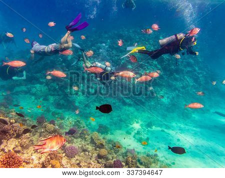Scuba Diving Explore The Red Sea, Egypt