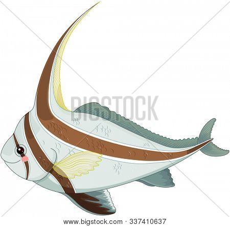 Illustration of cute jackknife fish