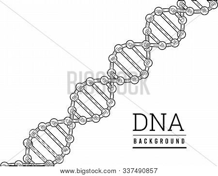Dna Structure. Deoxyribonucleic Acid. Vector Illustration On White