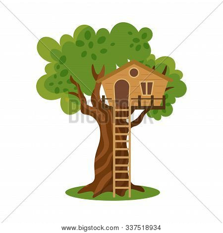 Wooden House On Tree With Ladder To Ground Vector Illustration