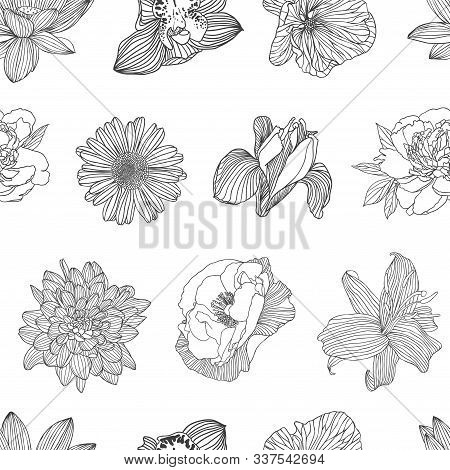 Seamless Pattern Of Different Vector Flowers. Linear Hand Drawn Lotus, Orchid, Mallow, Peony, Chamom