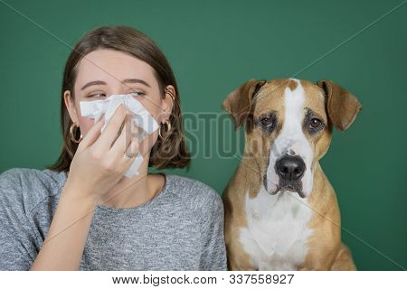 Portrait of a woman blowing her nose in a napkin and looking at her dog. Domestic animal allergy concept, sneezing and coughing in presenсe of pets