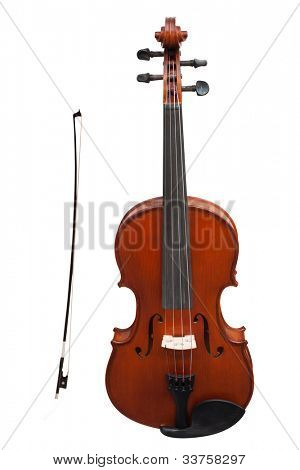 violins under the white background