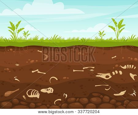 Archeology And Paleontology Flat Vector Illustration. Underground Surface With Dinosaur Bones. Burie