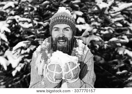 Guy With Happy Face With Firtrees Covered With Snow