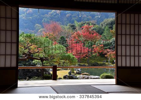 A Beautiful Japanese Garden With Autumn Colours Seen From The Back Of A Japanese-style Guest Room.