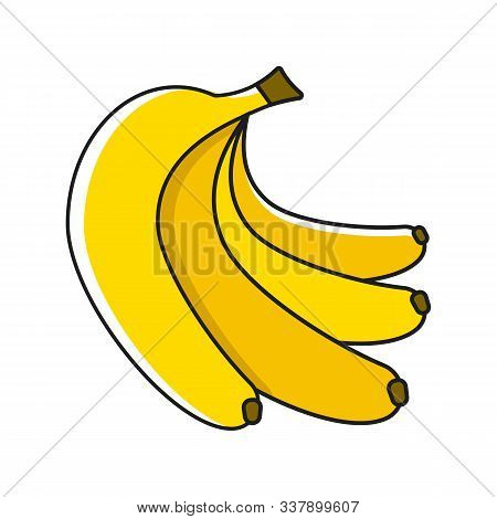 Banana Fruit Close Up. Bunch Of Bananas Isolated On White Background. Qualitative Vector About Banan
