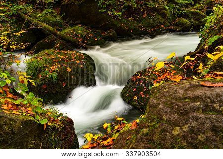 Closeup View Of Oirase Stream Flow Rapidly Passing Green Mossy Rocks Covered With Colorful Foliage O