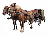 Two horses in the ancient carriage on a white background poster
