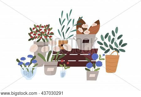 Flowers, Floral And Foliage Plants In Pots, Vases, Buckets, Planters And Wicker Baskets. Fresh Cut B