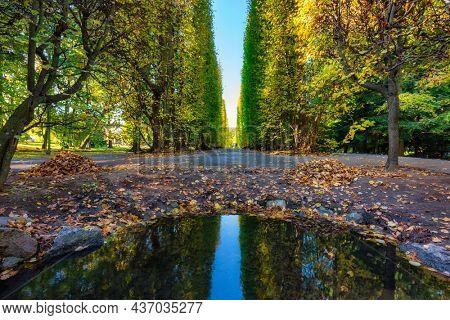 Autumn in the Oliwa Park of Gdansk, Poland. This is a public park.