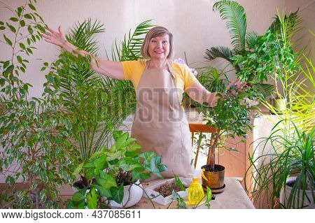 Happy Adult Woman Hugs And Cares For A Potted Plant. Caring For Indoor Plants At Home. Home Gardenin