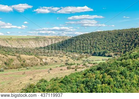 Scenery Of Green Rolling Hills . Spring Forest Growing . Natural Landscape
