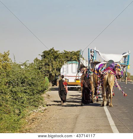 Camel Train On Ahmedabad Road