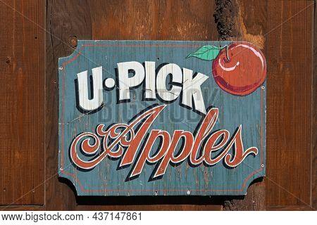 OAK GLEN, CALIFORNIA - 10 OCT 2021: Closeup of a U-Pick Apples sign on a shed in the Oak Glen Preserve.