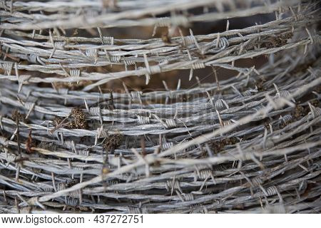 Close Up Of A Roll Of Barbed Fencing Wire