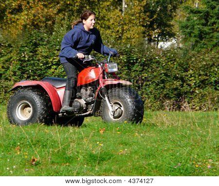 Getting Around The  Farm
