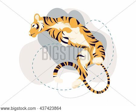 Funny Tiger Lies On Its Back On White Isolated Background. Bengal Tiger Is Resting. 2022 Chinese New