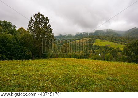 Mountainous Rural Landscape On A Cloudy Day. Trees On The Grassy Meadow