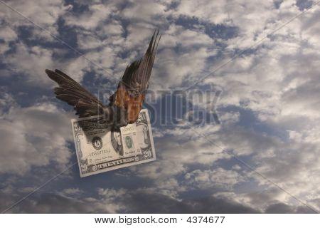 My Money Is Flying Away