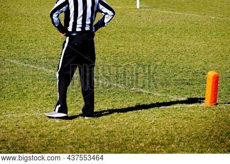 Football referee at the goal line in a game of competition on the field